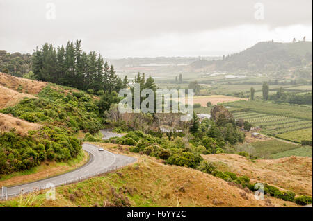 Takaka Valey, île du Sud, Nouvelle-Zélande Banque D'Images