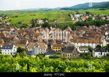 Village de vignes, Riquewihr, Haut-Rhin, Alsace, France