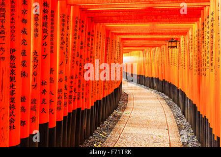 Torii gates dans Sanctuaire Fushimi Inari, Kyoto, Japon Banque D'Images