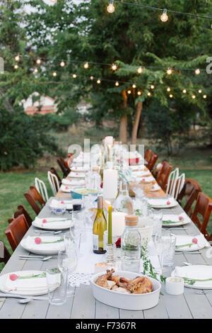 Longue table avec des assiettes et des verres, de l'alimentation et des boissons dans un jardin. Banque D'Images