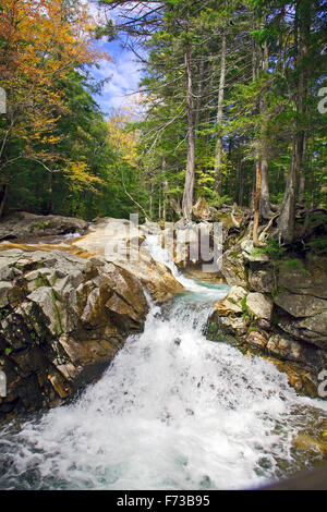 Franconia Notch State Park, New Hampshire Banque D'Images