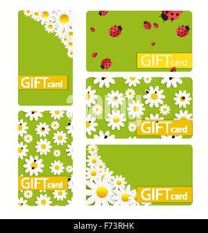 Résumé Carte cadeau magnifique ensemble design, illustration vectorielle. Banque D'Images