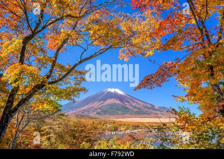 Mt. Fuji, au Japon, du lac Yamanaka en automne. Banque D'Images