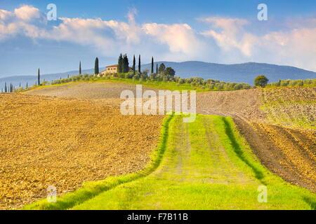 Paysage de Toscane, Val d'Orcia, Italie Banque D'Images
