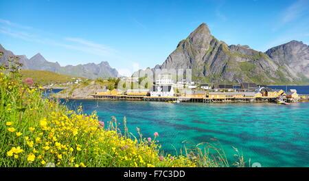 Les îles Lofoten, Paysage de printemps, Moskenes, Norvège Banque D'Images