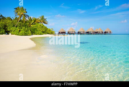 Tropical Beach at îles Maldives, Ari Atoll Banque D'Images