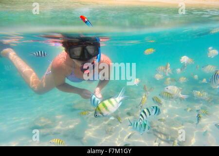 Sur la mer sous-marine, plongée avec tuba femme et le poisson, l'Île de Ko Samet, Thailande, Asie Banque D'Images