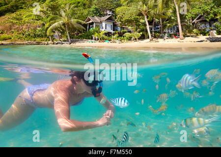 Femme plongée avec des poissons, plage de Ko Samet, Thailande, Asie Banque D'Images