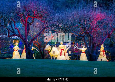 12 jours d'affichage de Noël, les Jardins Butchart, Brentwood Bay, île de Vancouver, Colombie-Britannique, Canada Banque D'Images