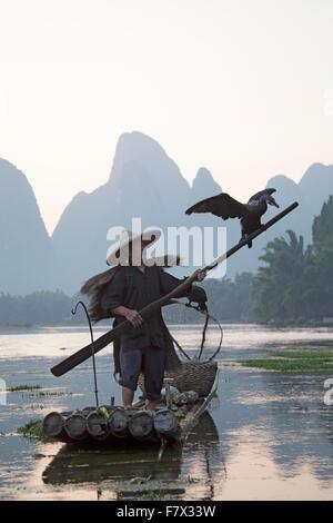 Pêcheur sur la rivière Li Cormorant Région Guilin Guangxi, Chine LA008351 Banque D'Images
