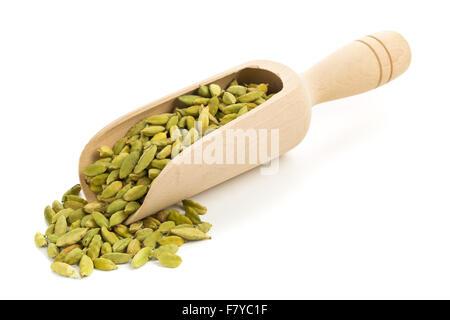 Les gousses de cardamome dans scoop en bois sur fond blanc Banque D'Images