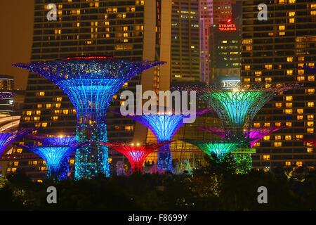 Scène de nuit de l'allumé dans l'Supertrees Supertrees Grove dans les jardins, près de la baie, Singapour, République Banque D'Images