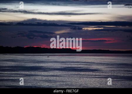 Bleu violet magnifique coucher du soleil sur le fleuve Amazone avec les silhouettes des arbres. L'état d'Amazonas, Brésil Banque D'Images