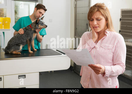 Worried Woman Looking At Bill en chirurgie vétérinaire Banque D'Images