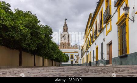 Scène de rue traditionnelles, Sevilla, Espagne Banque D'Images
