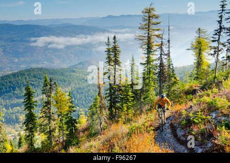 Un homme du vélo de montagne sur le cheval rouge Haut piste à Red Mountain Resort, dans la gamme de Rossland, près Banque D'Images