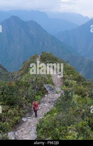 Les voyageurs au point de vue élevé de Montana Machu Picchu, Pérou Banque D'Images