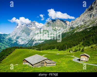 Alpes paysage avec Village de Grindelwald dans l'Oberland Bernois, Suisse Banque D'Images