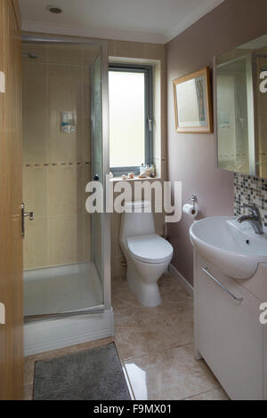 Salle de bains moderne dans une maison familiale. Une cabine de douche, lavabo et toilettes.