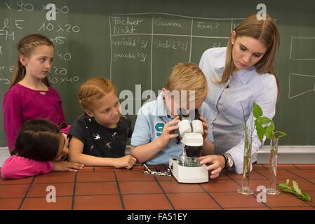 Les élèves de l'école avec l'enseignant de regarder à travers un microscope, Fürstenfeldbruck, Bavière, Allemagne Banque D'Images