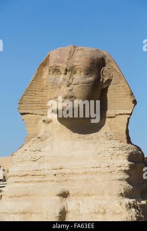 Le Sphinx, les pyramides de Gizeh, Giza, Egypte Banque D'Images