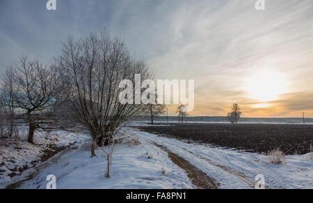 Hiver coucher de soleil sur les prairies et forêt avec soleil derrière cloud,Podlasie région,Pologne,Europe Banque D'Images
