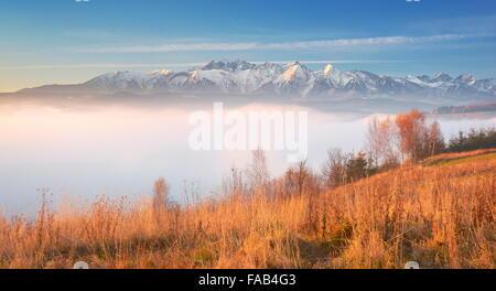 Tatras - vue de Posen, région de Pieniny, Pologne Banque D'Images