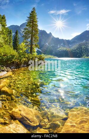 Le lac Morskie Oko, Tatras, Pologne Banque D'Images