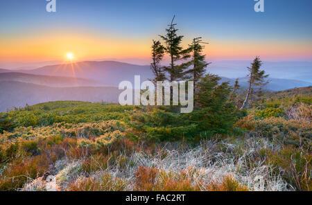 Montagnes des Beskides, coucher du soleil à l'Apogée Pilsko, Pologne Banque D'Images