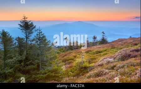 Montagnes des Beskides, lever du soleil à l'Apogée Pilsko, Pologne Banque D'Images