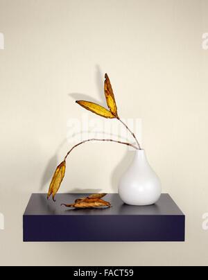 Les feuilles séchées dans un vase avec les ombres sur le mur Banque D'Images