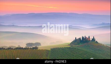 Paysage de la Toscane, San Quirico d'orcia, Italie Banque D'Images