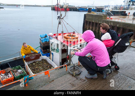 Burtonport, comté de Donegal, Irlande. 2e janvier 2016. Un bateau shellfishing retourne au port. Fruits de mer à Banque D'Images