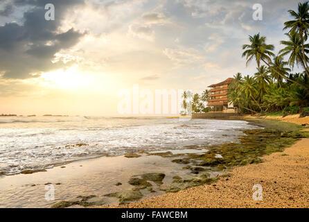 Chambre entre palmiers sur une plage de l'océan Banque D'Images