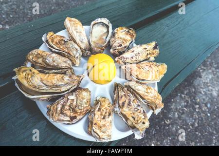Une douzaine d'huîtres et un citron sur une plaque en plastique de manger à l'extérieur près de la mer Banque D'Images