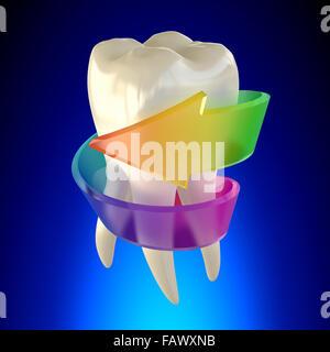 Molaire dent sain isolé sur fond bleu Banque D'Images