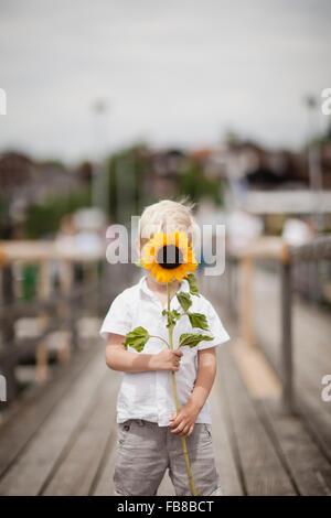 Allemagne, Bayern, Boy (4-5) holding sunflower