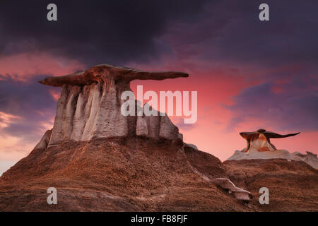 Les ailes, étranges formations rocheuses de Bisti Badlands, New Mexico, USA Banque D'Images