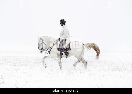 La Suède, Teenage girl (14-15) riding horse Banque D'Images