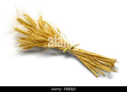 Petit paquet de blé isolé sur fond blanc. Banque D'Images