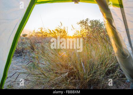 Camping le long du sentier Scout dans le Wonderland of Rocks, Joshua Tree National Park, Californie Banque D'Images