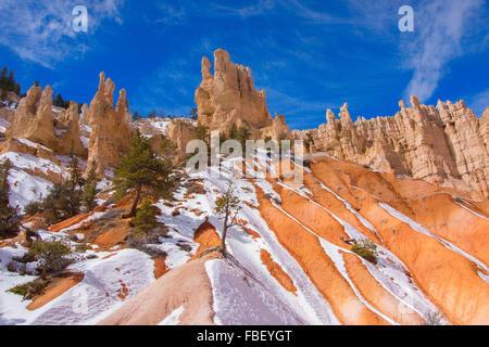 L'hiver à Bryce Canyon Banque D'Images