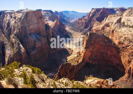 Vue du Canyon, Zion National Park Banque D'Images