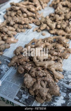 Des piles de la racine de gingembre frais affichés sur journal. Disposés en quantités pour acheter au marché, Nagaland Banque D'Images