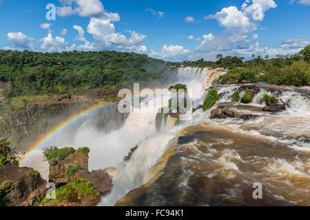 Une vue de la piste supérieure, Iguazu Falls National Park, UNESCO World Heritage Site, Misiones, Argentine, Amérique Banque D'Images