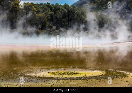 Wai-O-Tapu Thermal Wonderland, Rotorua, île du Nord Nouvelle-zélande, Pacifique