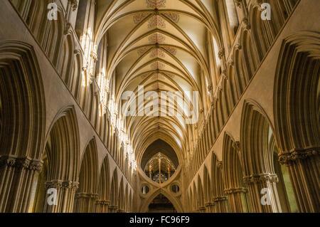 L'intérieur de la cathédrale de Wells, Somerset, Angleterre, Royaume-Uni, Europe