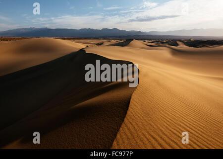 Mesquite Sand Dunes à l'aube, la Death Valley National Park, California, États-Unis d'Amérique, Amérique du Nord