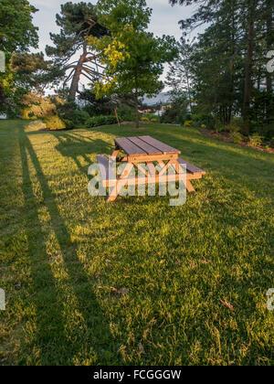 Table de pique-nique au coucher du soleil avec de longues ombres sur l'herbe verte dans un parc avec des arbres Banque D'Images