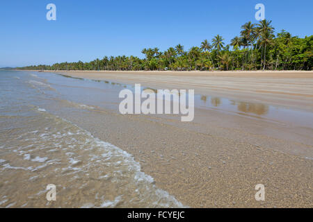 Plage avec des palmiers à Mission Beach, Queensland, Australie Banque D'Images